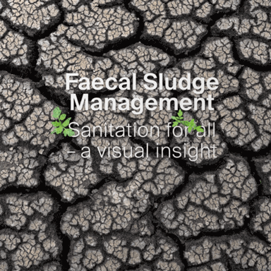 Faecal Sludge Management: Sanitation for all - a visual insight